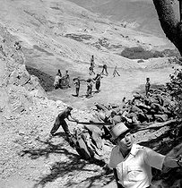 Supplying woods for the army (26th Goum). Near Imi n' Tanout (Morocco), July 1945. © Gaston Paris / Roger-Viollet