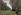 """Claude Monet (1840-1926). """"Le Pavé de Chailly. Forêt de Fontainebleau"""" (about 1865). Paris, musée d'Orsay. © Roger-Viollet"""