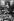 Anschluss. Gerbes de fleurs devant un portrait d'Adolf Hitler à l'office du tourisme de Vienne (Autriche), 2 mars 1938. © Ullstein Bild/Roger-Viollet