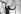 Fidel Castro (1926-2016), homme d'Etat et révolutionnaire cubain, coupant la canne à sucre. Cuba, 1970. © Gilberto Ante/Roger-Viollet