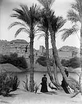 Temple and palm trees along the Nile river. Philae Island (Egypt), circa 1900. Detail of a stereoscopic view. © Léon et Lévy / Roger-Viollet