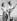 John F. Kennedy (1917-1963), homme politique américain, et sa fiancée Jackie (1929-1994), lors de vacances dans la maison d'été des Kennedy. Barnstable (Massachusetts, Etats-Unis), juin 1953. © TopFoto / Roger-Viollet
