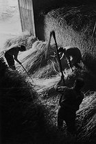 Farming. Threshing of wheat with flails. Corrèze (France), 1966. Photograph by Jean Marquis (1926-2019). © Jean Marquis / Roger-Viollet