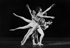 """""""Apollon Musagète"""". Musique de Stravinsky. Chorégraphie de G. Balanchine, avec Rudolf Noureev, Noëlla Pontois, Wilfride Piollet et Nanon Thibon. Opéra de Paris, décembre 1972. © Colette Masson/Roger-Viollet"""
