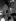 Guerre 1939-1945. Libération de Paris. Troupes alliées venant en aide à des blessés devant la cathédrale Notre-Dame. Paris, août 1944. © TopFoto / Roger-Viollet