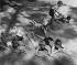 Enfants jouant au jeu de la guerre, 1941. © Regina Relang/Ullstein Bild/Roger-Viollet