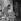"""""""Le Couturier de ces dames"""", film de Jean Boyer. Fernandel et Suzy Delair. France, 27 janvier 1956. © Alain Adler / Roger-Viollet"""