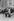 Jimmy Carter (né en 1924), président des Etats-Unis, et Valéry Giscard d'Estaing (né en 1926), président de la République française, en visite en Normandie, sur les lieux du débarquement. 1977. © Jacques Cuinières / Roger-Viollet