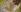 """Egon Schiele (1890-1918). """"Etreinte"""". Huile sur toile, 1917. © Imagno / Roger-Viollet"""
