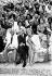 Melina Mercouri (1920-1994), actrice et femme politique grecque, et Jules Dassin (1911-2008), acteur et cinéaste américain. Athènes (Grèce), 21 juin 1961. © TopFoto / Roger-Viollet