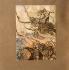 """""""Le Crépuscule des Dieux"""" (Götterdämmerung), opéra de Richard Wagner. Siegfried et Brünnhilde. Illustration de Arthur Rackham (1867-1939), 1910. Collection Bruno Lussato. Paris B.N.F. © Colette Masson / Roger-Viollet"""