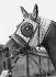 Cheval portant un masque à carreaux, vers 1920-1930. © Imagno/Roger-Viollet