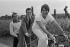 """Gilles Pernet, journaliste à """"L'Equipe"""", Bernard Hinault et Bernard Tapie lors du rachet des marques """"Look"""" et """"La Vie Claire"""". © Roger-Viollet"""