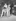 Shirley Temple (1928-2014) et son mari John Agar (1921-2002), acteurs américains, avec leur fille, Linda Susan Agar (née en 1948). Etats-Unis, 1949. © TopFoto/Roger-Viollet