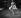 Annie Cordy (née en 1928), actrice et chanteuse belge. © Noa / Roger-Viollet