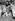 Jeanne Moreau, actrice française, se faisant coiffer lors d'un tournage. © Jack Nisberg/Roger-Viollet