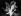 Les mains de Sacha Guitry (1885-1957), acteur, écrivain et cinéaste français. Photographie d'Henri Manuel (1874-1947). © Henri Manuel / Collection Harlingue / Roger-Viollet