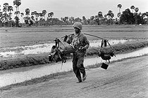 Soldier in charge of supplies in the ricefields near the front. Cambodia, 1974. © Françoise Demulder / Roger-Viollet