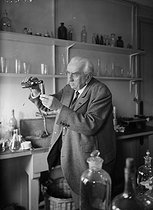 Louis Lumière (1864-1948), French chemist and manufacturer. © Albert Harlingue / Roger-Viollet