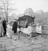 Secondhand booksellers on the banks of the river Seine. Paris, 1950's. Photograph by Marcel Cerf (1911-2010). Bibliothèque historique de la Ville de Paris.  © Marcel Cerf / BHVP / Roger-Viollet