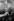 Femme cueillant une rose. © Laure Albin Guillot / Roger-Viollet