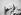 Fleurs. Paris, vers 1930. © Laure Albin Guillot / Roger-Viollet