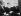 De g. à dr. : Carl Rowan (1925-2000), ambassadeur américain, Frans Eemil Sillanpää (1888-1964) écrivain finlandais reçevant cette année-là le prix Nobel de littérature, et John Steinbeck. Helsinki (Finlande), 14 octobre 1963. © TopFoto / Roger-Viollet