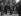 Le général De Gaulle, président de la République française et Olivier Guichard (en partie caché) lors d'une garden-party. Paris, jardins du palais de l'Elysée, 16 juin 1960. © Roger-Viollet