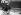 Guerre 1939-1945. Femme transportant des carottes sur son vélo. France, juin 1944. © LAPI/Roger-Viollet