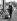 Le prince Charles assistant aux Badminton Horse Trials, concours complet d'équitation. Angleterre, 21 avril 1960.   © TopFoto/Roger-Viollet