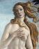 """Sandro Botticelli (1445-1510). """"La naissance de Vénus"""", détail. Détrempe sur bois, vers 1485. Florence (Italie), galerie des Offices. © Alinari/Roger-Viollet"""