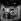 """""""Gloriana sera vengée"""", adaptation de la """"Tragédie du vengeur"""" de Cyril Tourneur, mise en scène de Jean Vernier. J. Deshayes, J. Touquet, Jean-Pierre Mocky, M. Jacquemin, P. Casanova, H.  Poirier, F.-G. Moreau, M. Christian, Michel Paulin et A. Gleize. Paris, théâtre de la Huchette, mars 1952. © Studio Lipnitzki / Roger-Viollet"""