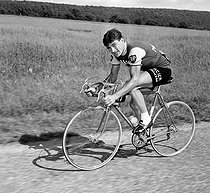 Raymond Poulidor (1936-2019), French racing cyclist, during the 1963 Tour de France. © Roger-Viollet