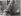 Enfants. Deux garçons au bord d'un bassin. 1936. Photographie de Marcel Cerf (1911-2010). Bibliothèque historique de la Ville de Paris. © Marcel Cerf/BHVP/Roger-Viollet