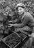 Wine growers. Grape harvester. Champagne region. Mareuil-sur-Ay (France). Montebello champagne. Photograph by François Kollar (1904-1979). Paris, Bibliothèque Forney. © François Kollar / Bibliothèque Forney / Roger-Viollet