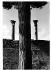 Ostia Antica. Thermes de Neptune. Rome (Italie), 2002. © Jean Mounicq/Roger-Viollet