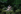 """""""Faust"""" opéra en 5 actes écrit par Goethe, composé par Charles Gounod sous la direction musicale d'Alain Altinoglu. Mise en scène de Jean-Louis Martinoty. Décors: Johan Engels. Costumes: Yan Tax. Lumières: Fabrice Kebour. Interprètes: Roberto Alagna (Faust), Inva Mula (Marguerite). Paris, Opéra Bastille, 19 septembre 2011. © Colette Masson / Roger-Viollet"""