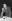 Albert Camus (1930-1960), écrivain, auteur dramatique français. Prix Nobel de littérature, 1957. Photo : Daniel Walland. © Daniel Walland / TopFoto / Roger-Viollet