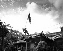 Korean war (1950-1953). Marine Pvt. 1st Class Luther Leguire raises US Flag at American consulate in Seoul, while fighting for the city raged around the compoud. September 27, 1950. (Marine Corps) © US National Archives / Roger-Viollet