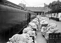Transport and mail strike. The Post Office and the SNCF, French railway company. Mail bags on the platform of a train station. Paris, on August 24, 1953. © Roger-Viollet