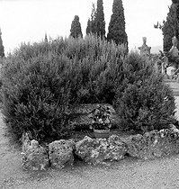 Tomb of Albert Camus (1913-1960), French writer, at the cemetery of Lourmarin (France). © Roger-Viollet