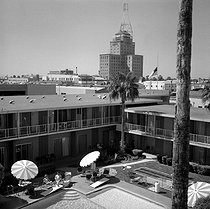 Phoenix (Arizona, United States). The swimming pool of the Sahara hotel. April 1964. © Hélène Roger-Viollet et Jean Fischer/Roger-Viollet
