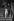 Karl Lagerfeld (1933-2019), couturier allemand. Fête au Palace en présence de Loulou de la Falaise. Paris, 1978. © Jack Nisberg / Roger-Viollet