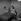 """""""Les Quatre Vérités"""", film à sketches de René Clair. Leslie Caron et Charles Aznavour. France, 1962. 2 août 1962. © Alain Adler / Roger-Viollet"""
