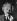 Albert Einstein (1879-1955), physicien américain d'origine allemande. © TopFoto / Roger-Viollet