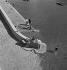 Guerre 1939-1945. Les petits métiers de Paris. Le laveur de chiens. Paris, 1943. Photographie d'André Zucca (1897-1973). Bibliothèque historique de la Ville de Paris. © André Zucca / BHVP / Roger-Viollet