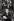 Karl Lagerfeld (1933-2019), styliste, couturier, photographe et éditeur allemand, directeur artistique très médiatisé de la maison de couture Chloé et de la maison de Haute couture Chanel. 18 janvier 1983. © Jean-Pierre Couderc / Roger-Viollet