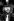 """Ringo Starr (né en 1940), batteur anglais et ancien membre des Beatles, lors de la première de """"Who's Rock Opera - Tommy"""". Angleterre, 26 mars 1975. © PA Archive/Roger-Viollet"""