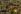 Le dôme du Rocher (ou coupole du Rocher). Jérusalem (Palestine, Israël), 1996. © Jean-Paul Guilloteau / Roger-Viollet