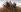 Mao Zedong (1893-1976), homme d'Etat chinois, parmi les paysans. Affiche de propagande chinoise. © Roger-Viollet